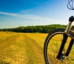 bicicletta parco est cave