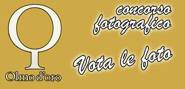 votafotoolmo