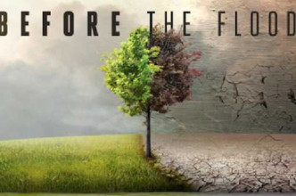 beforetheflood