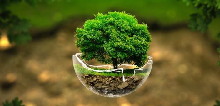 volontariato_ambientale