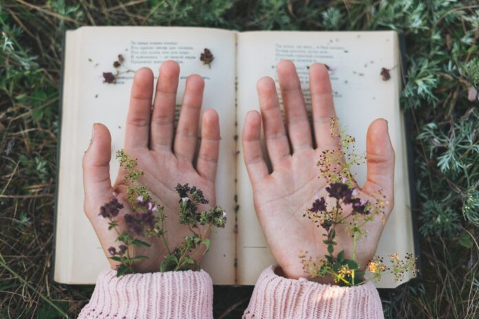 Women's hands with wild flowers on open book on grass, love to read